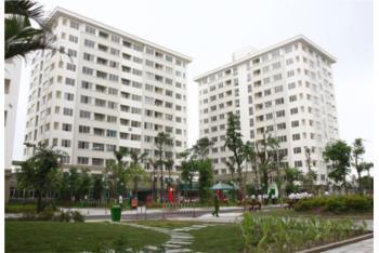 TP.HCM tìm cách hạ giá bán nhà ở xã hội